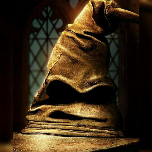 Hogwarts Wizard's School