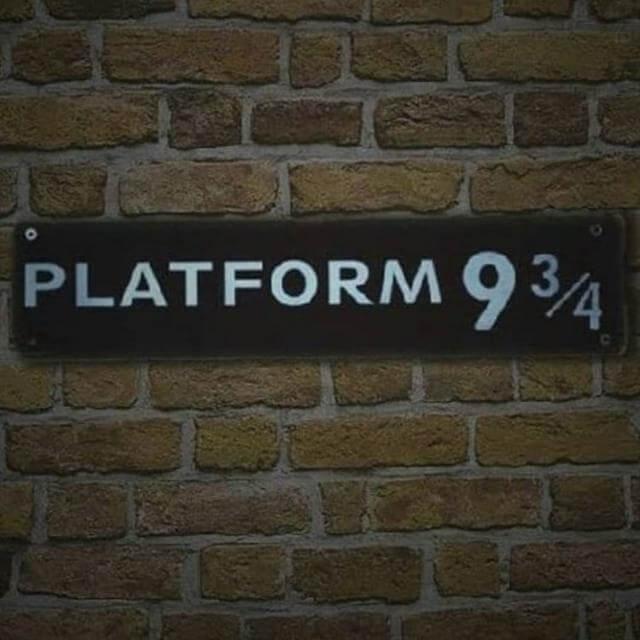 ⚡🕊 platform 9¾ тнυη∂єявιя∂ 🕊⚡